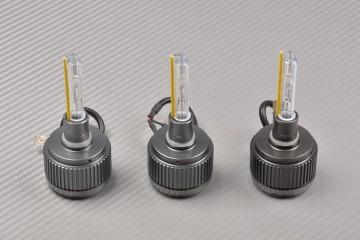 Xenon Lighting Kit TRIUMPH