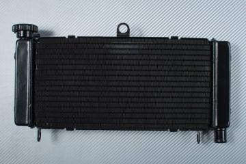 Radiator HONDA HORNET 600