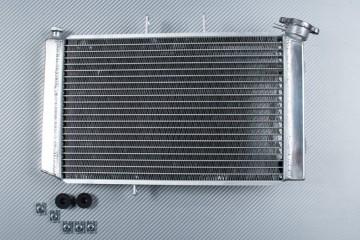 Radiateur TRIUMPH TIGER 800