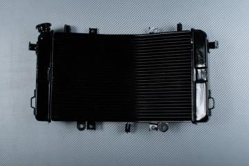 Radiator SUZUKI BKING 1340 2007 - 2014