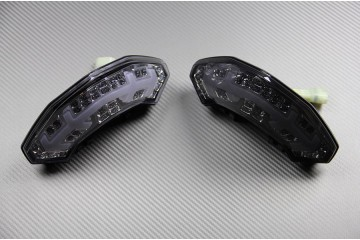 LED Taillight with Integrated turn signals for Ducati Multistrada 1200 2011 / 2014