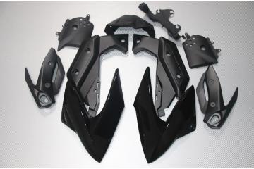 Motorradverkleidung YAMAHA XJ6 2009 / 2012