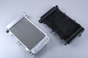 Radiator YAMAHA FZ6 FZ6N & FAZER 600 2004 - 2006