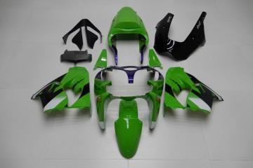 Komplette Motorradverkleidung KAWASAKI ZX9R 2000 - 2003