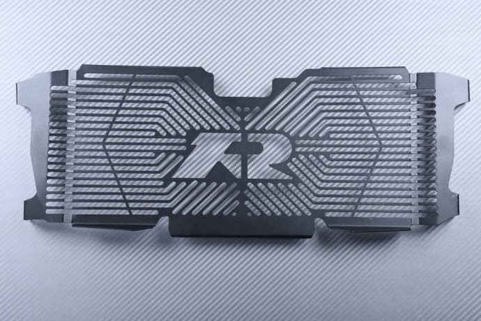Radiator protection grill BMW R1200R R1250R
