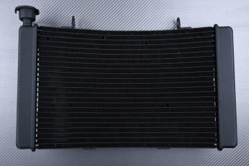 Radiador BENELLI TRE-K 899 2009 - 2014