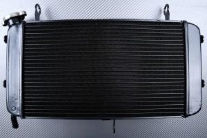 Kühler SUZUKI GSX-S 750 2017 - 2021