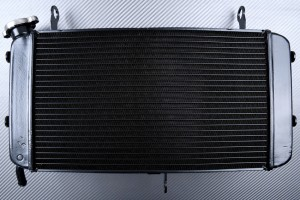 Radiador SUZUKI GSX-S 750 2017 - 2021