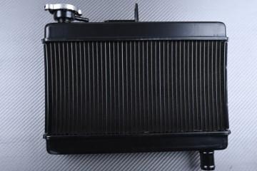 Radiatore HONDA CMX 500 REBEL 2017 - 2021