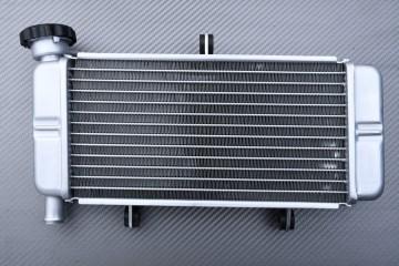 Radiator HONDA CBR 250 / 300 R 2011 - 2017