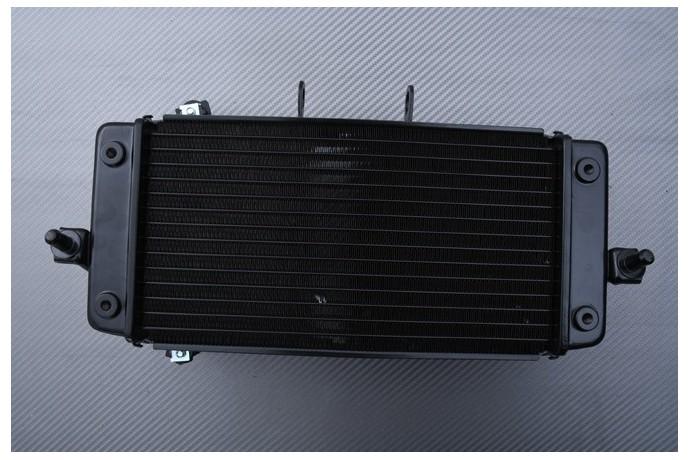 Radiator SUZUKI INAZUMA & GSXR 250 2013 - 2021