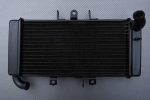 Radiatore YAMAHA FZ 400 1997 - 2011