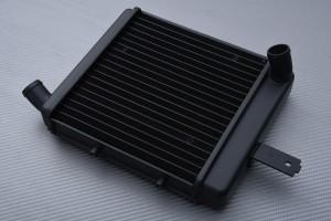 Radiadors BENELLI TNT 899 / 1130 / S 2004 - 2013