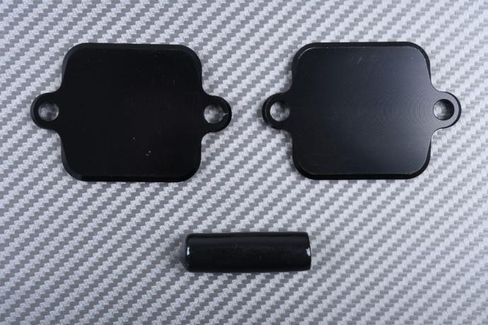 Smog block off plates KAWASAKI Z1000 / Z800 / Z750 / ZX6R / ZX10R / ZZR 1400