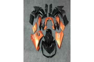 Komplette Motorradverkleidung KAWASAKI Z1000 2010 / 2013