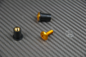 Windscreen screw