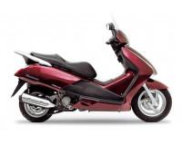 PANTHEON FES 125 / 150 / 250 2006-2012