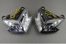 Tail Light with Integrated Turn Signals