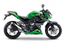 Z300 2015-2017