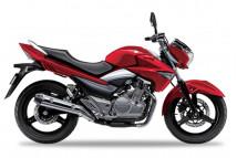 GSX 250 INAZUMA 2013-2020