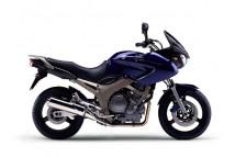 TDM 900 2002-2003